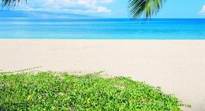 卡阿纳帕利海滩
