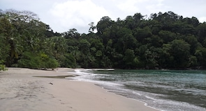 Bãi biển Manuel Antonio
