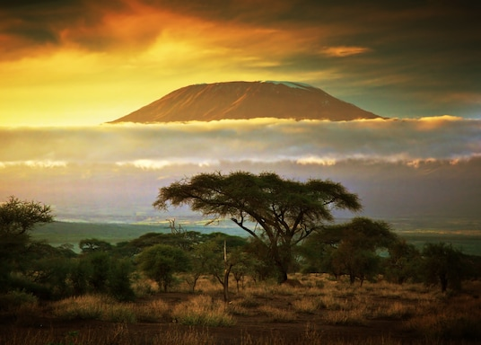 אמבוסלי, קניה