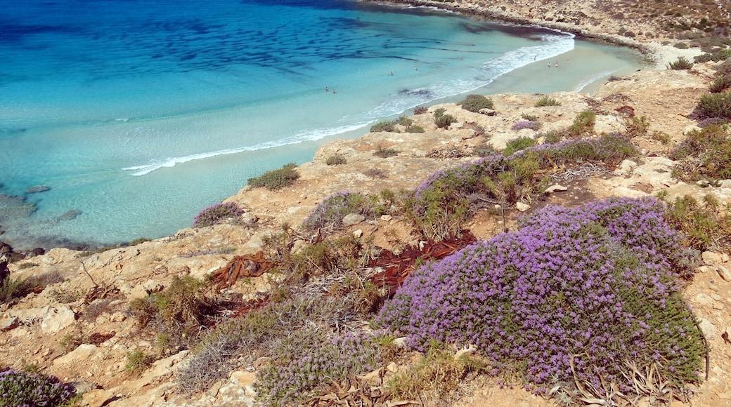 Spiaggia dei Conigli