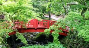 Záhrada so slivkami Atami