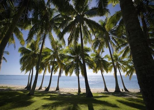Kilpkonnasaar, Fidži