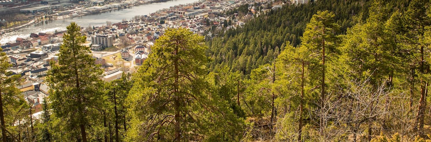 Buskerud (provincia), Noruega