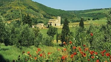 Montalcino/