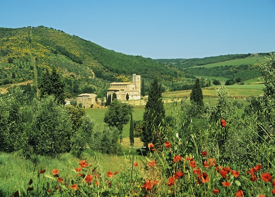 Brunello di Montalcino Wine Area, Italy