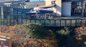Pusat Sukan Antarabangsa Ponds Forge