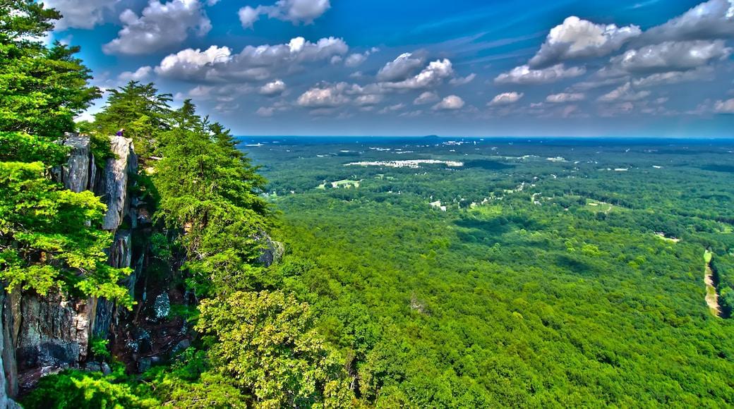 Kings Mountain