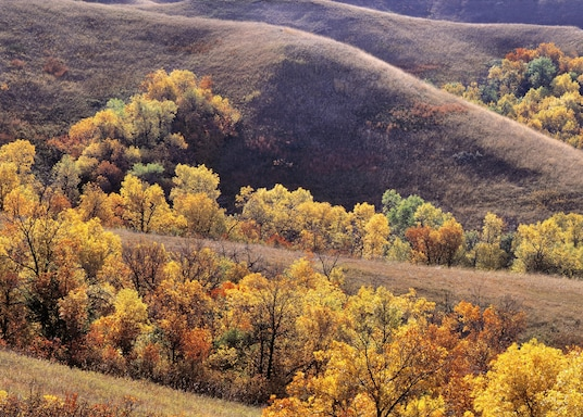 North Dakota, United States of America