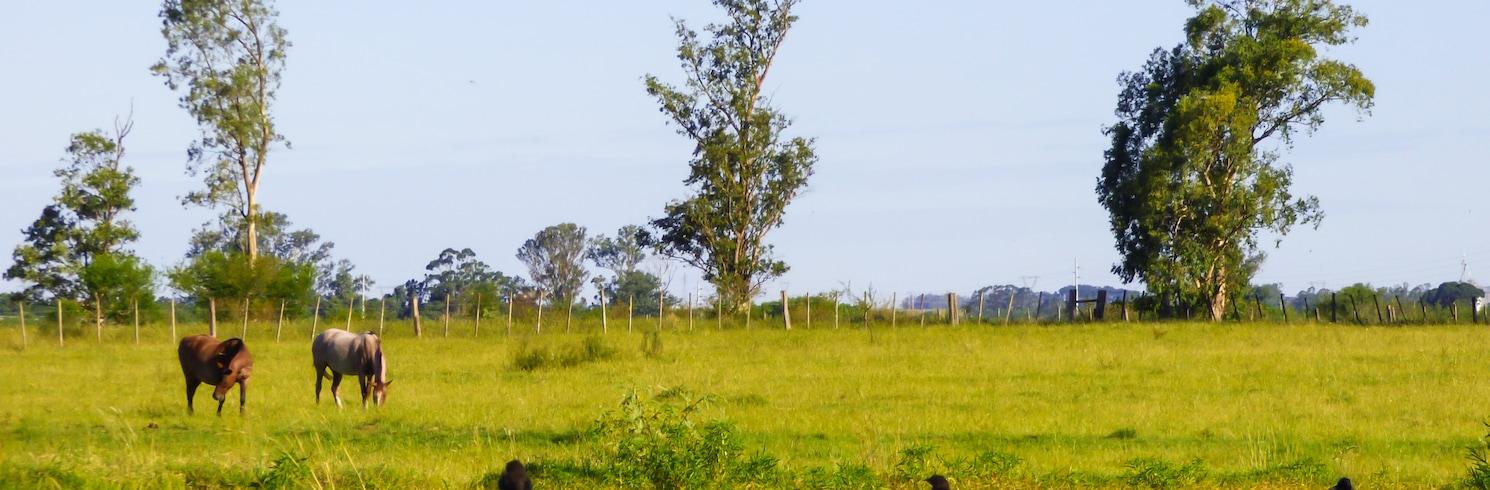Uruguaiana, Brazil