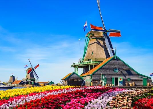 桑達姆, 荷蘭