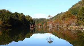 Beavers Bend Resort Park
