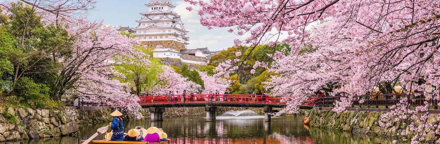 ฮิเมจิ, ญี่ปุ่น