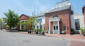 Whaling Museum (museum)