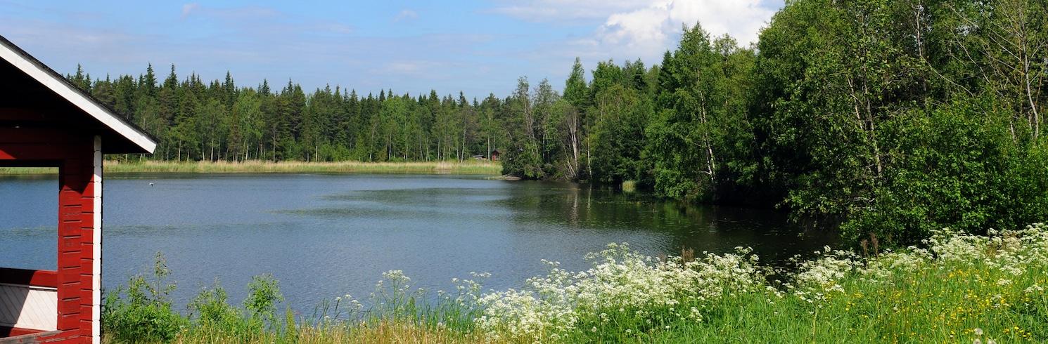 Raahe, Somija