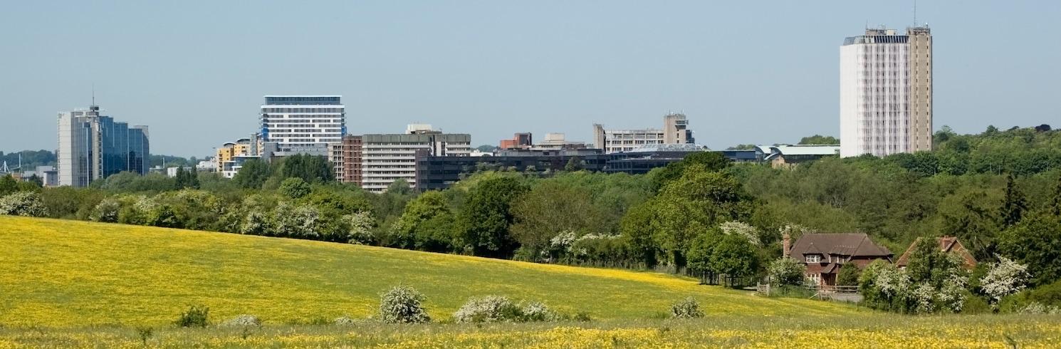 Basingstoke, Inggris Raya