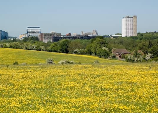 Basingstoke, United Kingdom