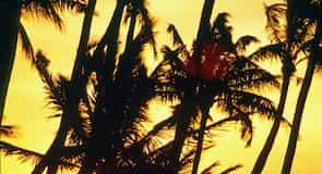 Waikōloa Beach