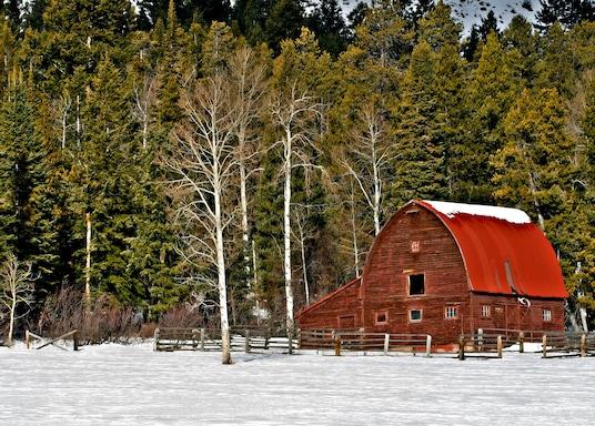 Wilson, Wyoming, Birleşik Devletler