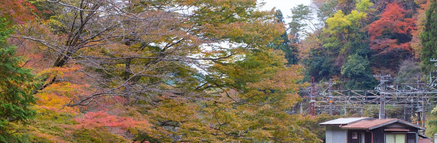 Koja, Japāna