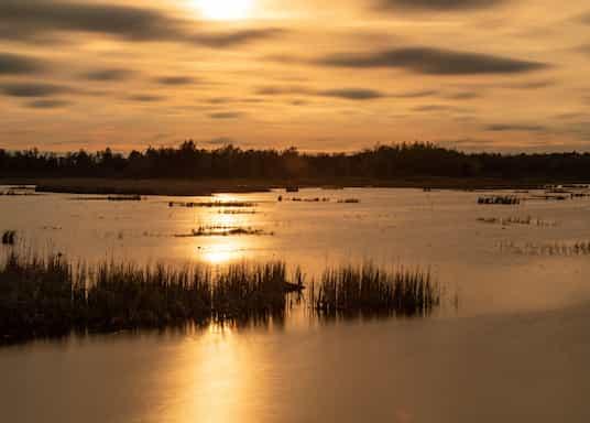 Higgins Lake, Michigan, Amerika Serikat