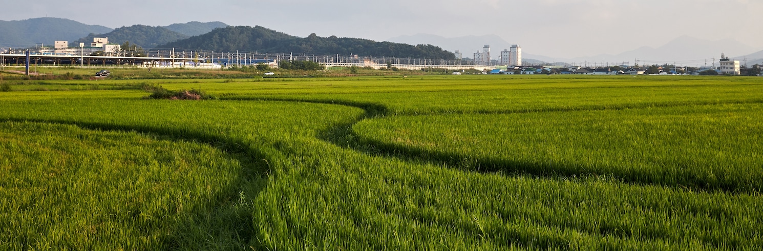 Jeongeup, South Korea