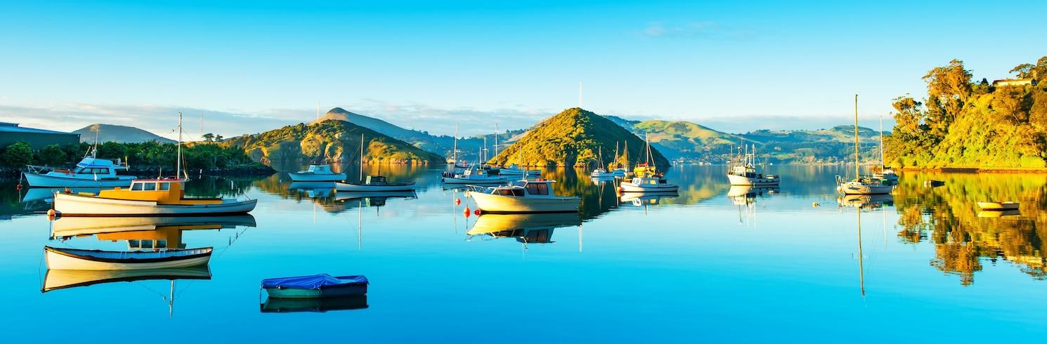 Dunedin (และบริเวณใกล้เคียง), นิวซีแลนด์