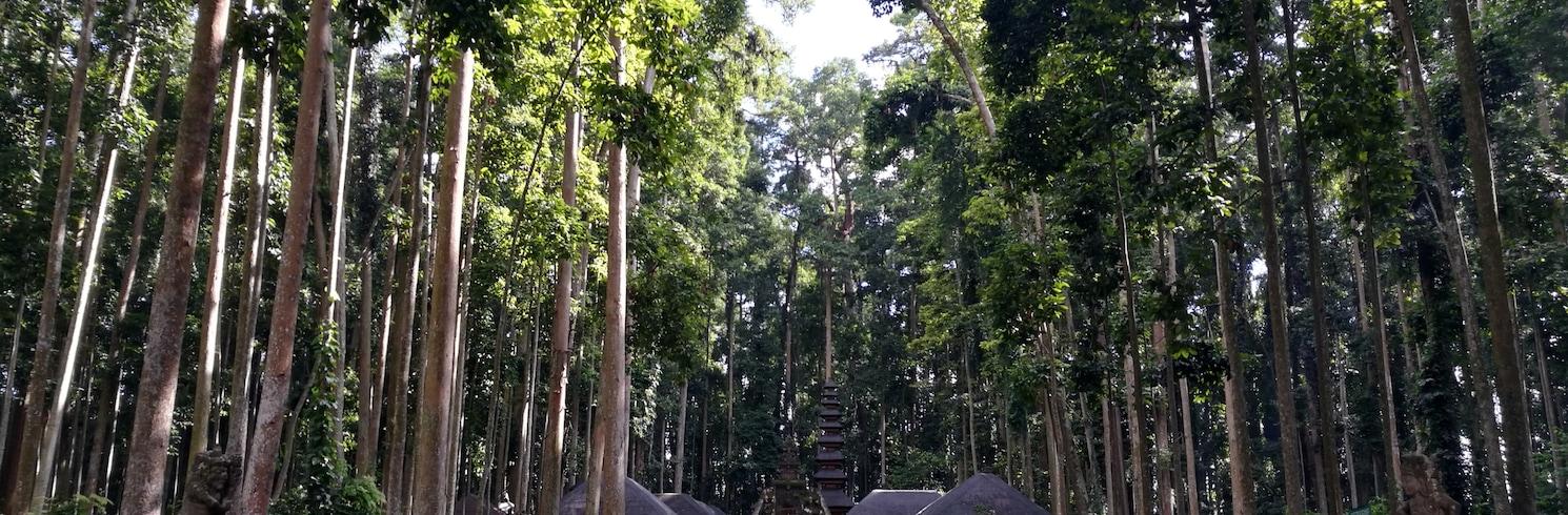 Abiansemal, Indonesia
