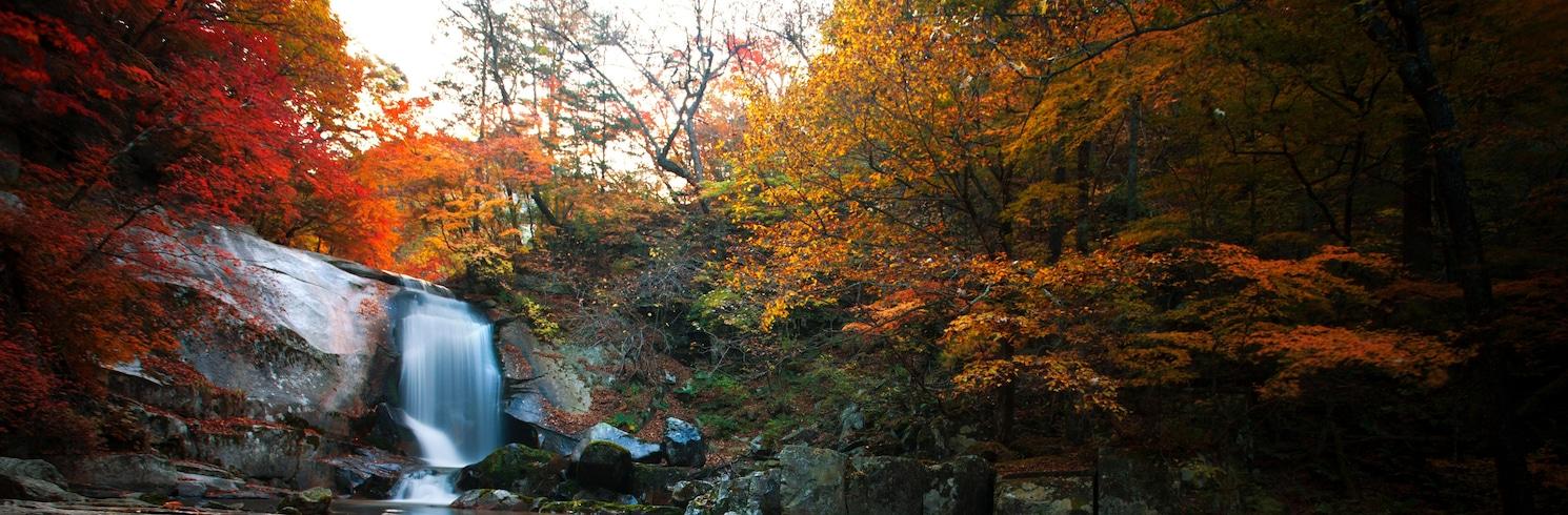 Индже, Южная Корея