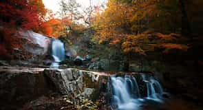 Erholungswald Bangtaesan