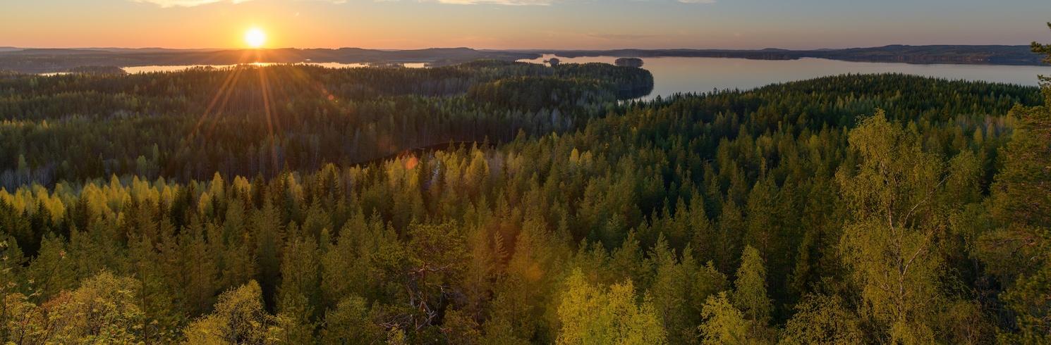 勞卡, 芬蘭