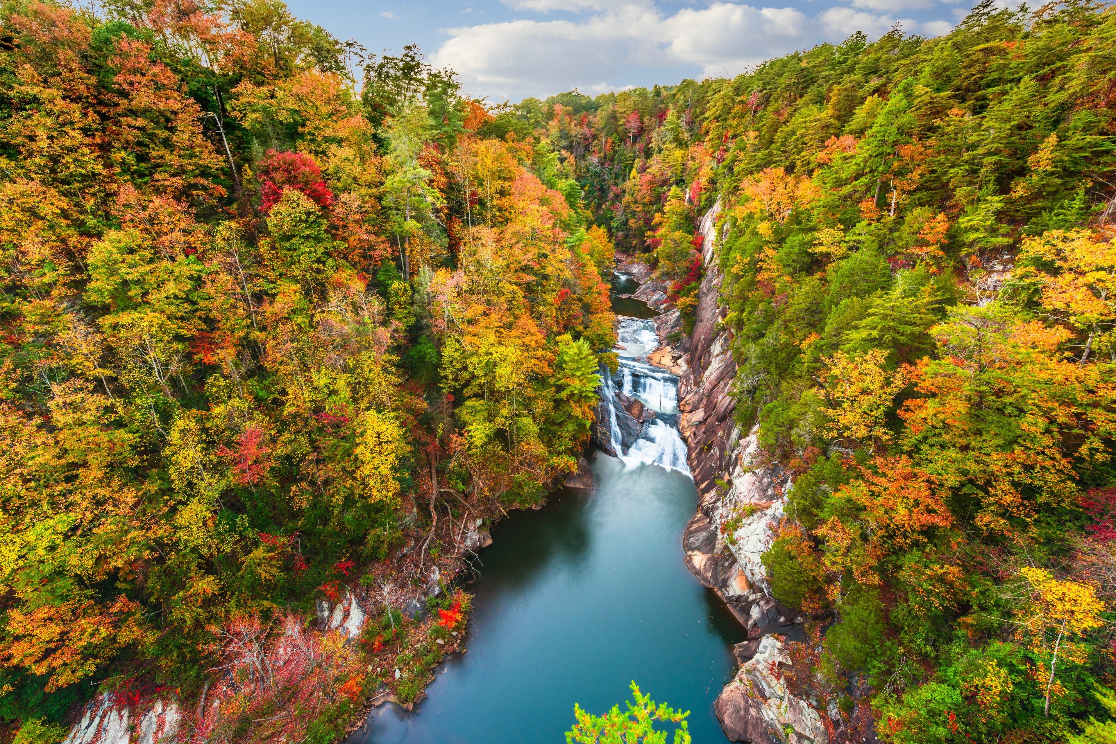 Fannin County, Georgia, United States of America