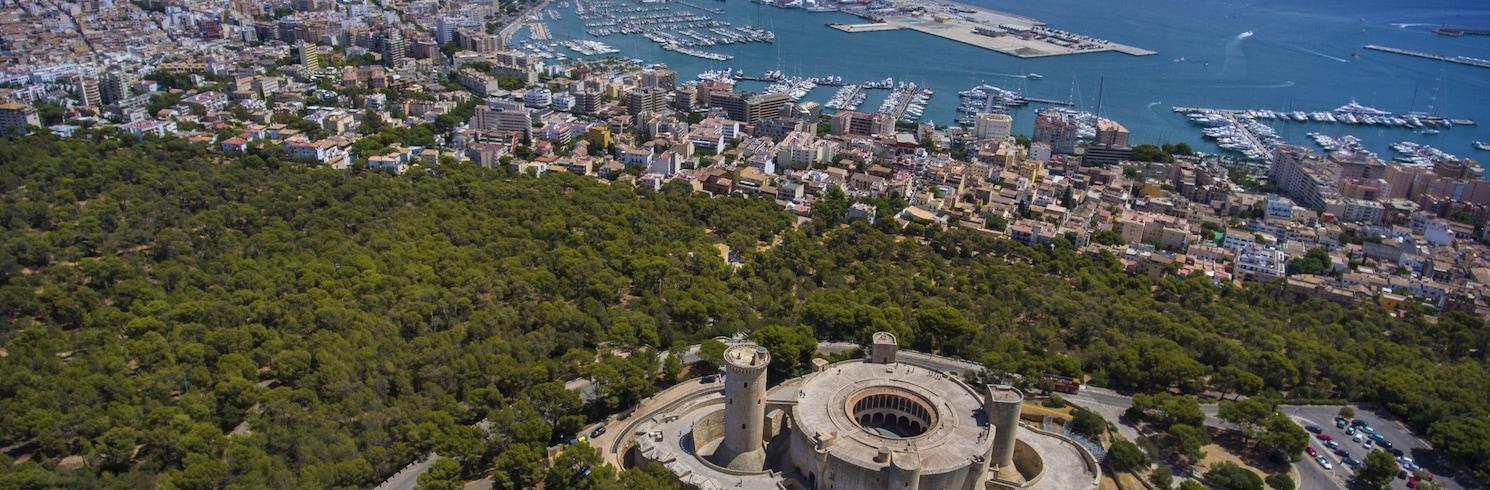 Palma de Mallorca, Španjolska