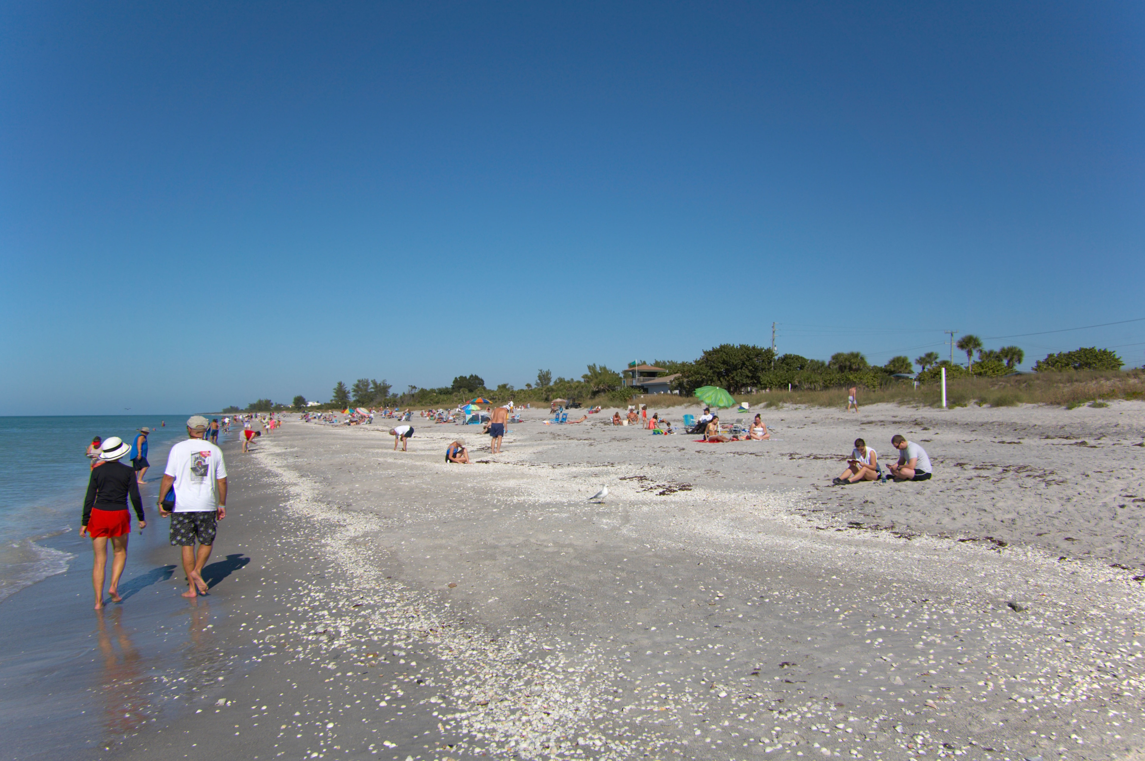 Manasota Beach Vacation Rentals: house rentals & more | Vrbo