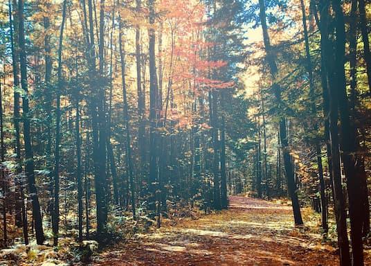 جولييت, كيبك, كندا