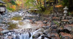 Термальные источники Takaragawa