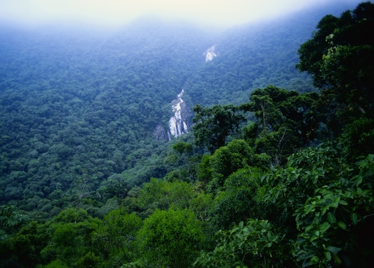 Bertioga, Brazília
