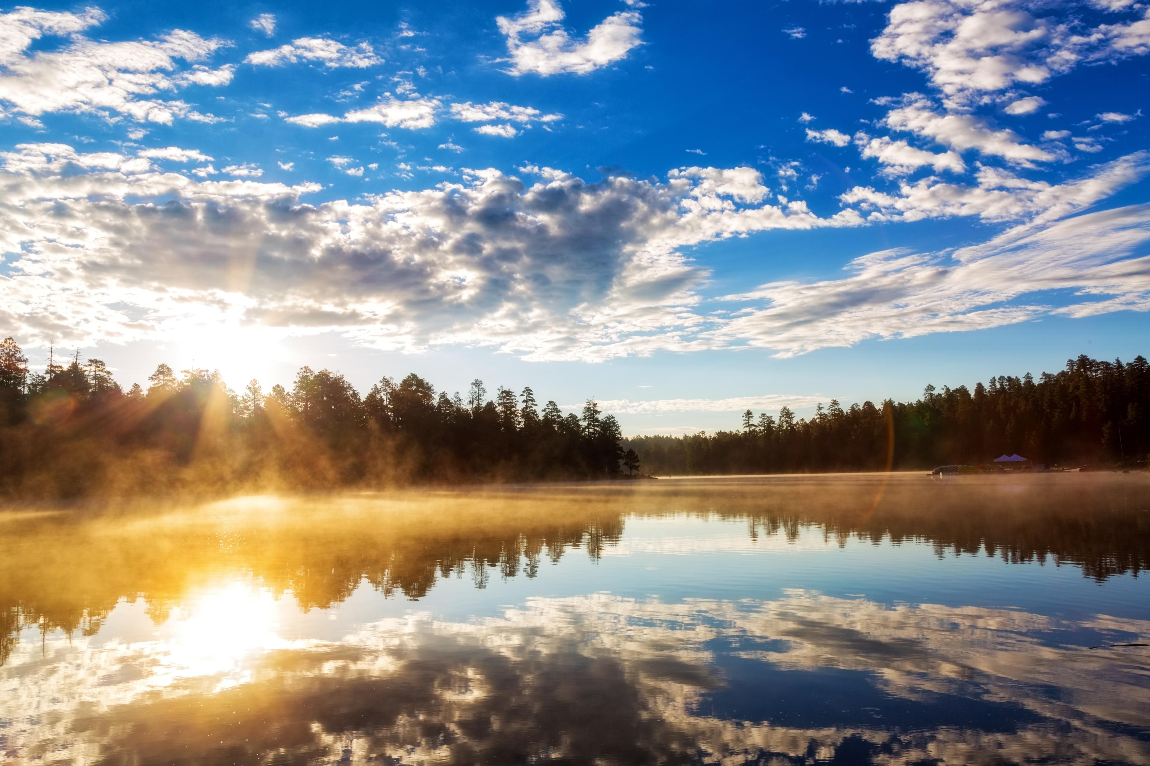 Forest Lakes Estates, Arizona, United States of America