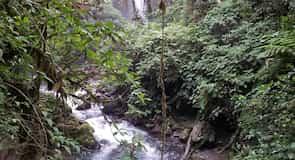 Jardines de las Cataratas de la Paz