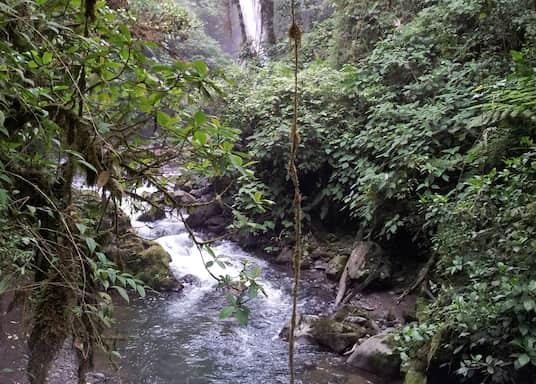 Βάρα Μπλάνκα, Κόστα Ρίκα