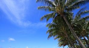 شاطئ بويبيو