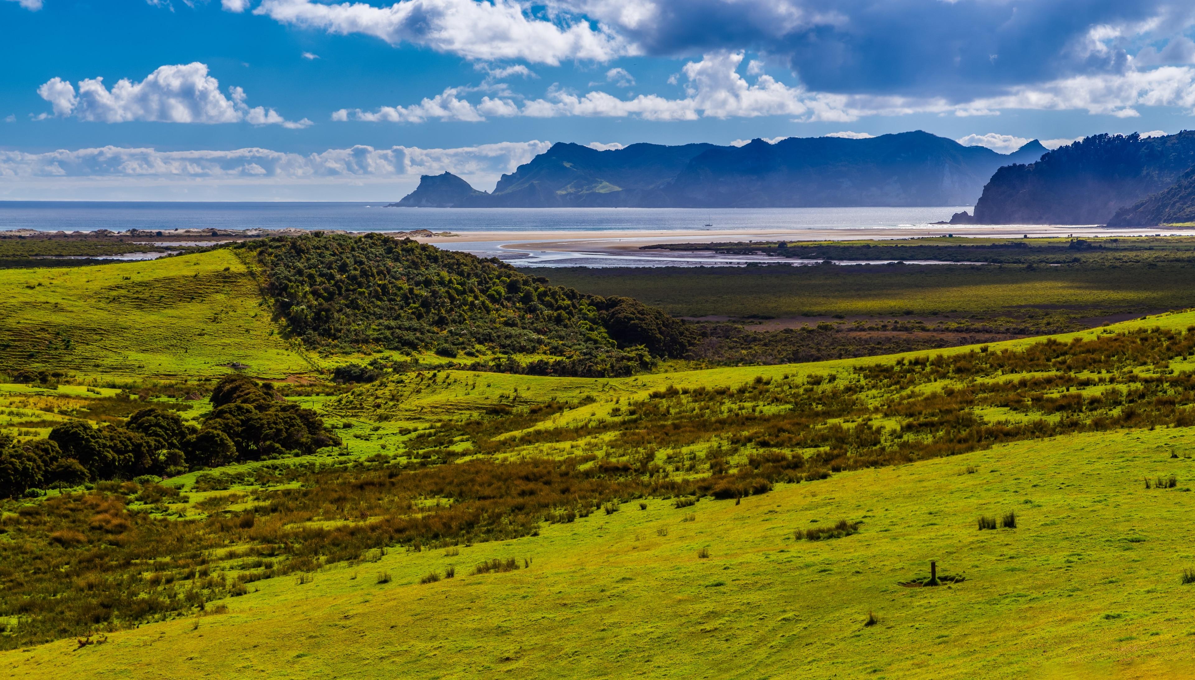 Great Barrier Island, Auckland Region, Neuseeland