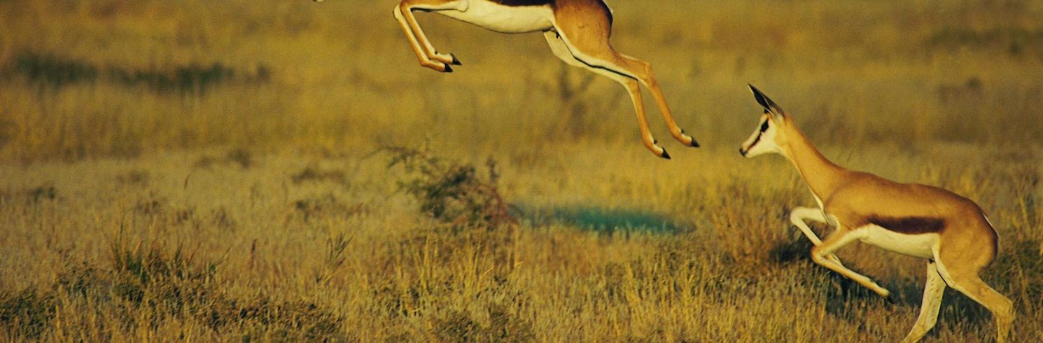 Заповедник Central Kalahari Game Reserve, Ботсвана