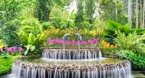 حديقة الأوركيد الوطنية