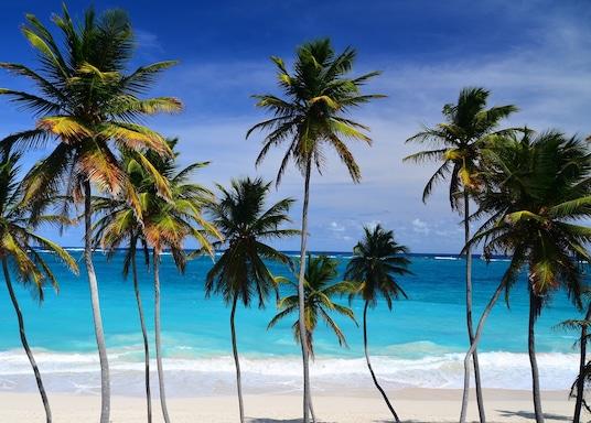 Barbadoseyjar