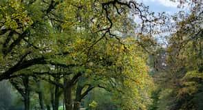 Bremen Buergerpark