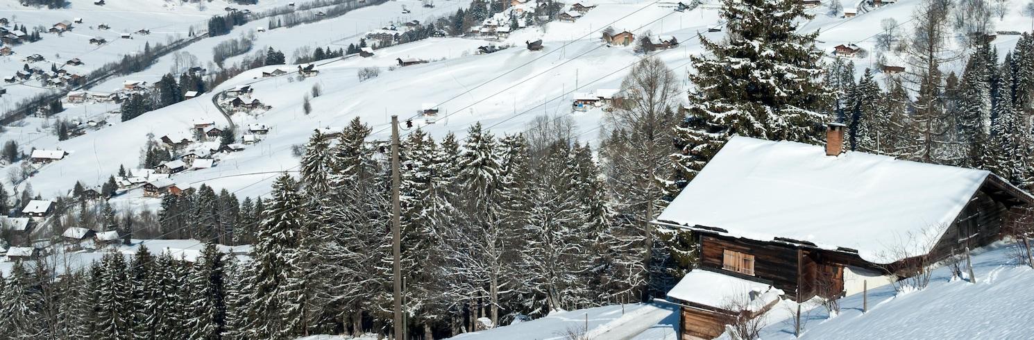 Lenk, Svizzera