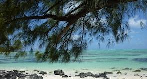 Elnių Salos paplūdimys