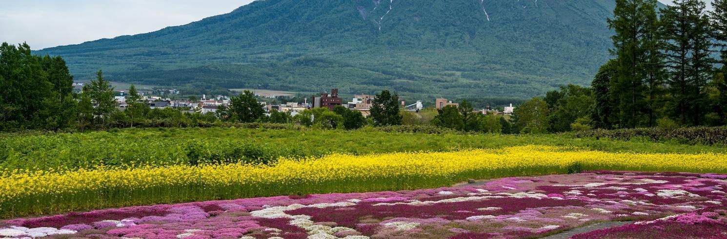 Niseko (et environs), Japon