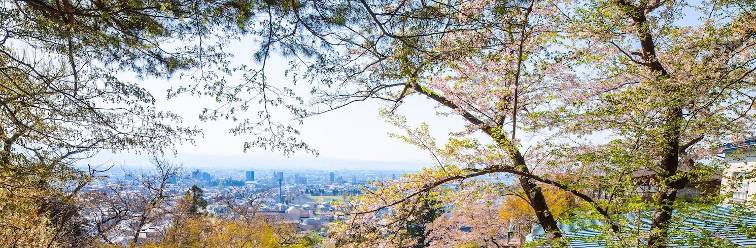 Aizuwakamatsu, Japonsko