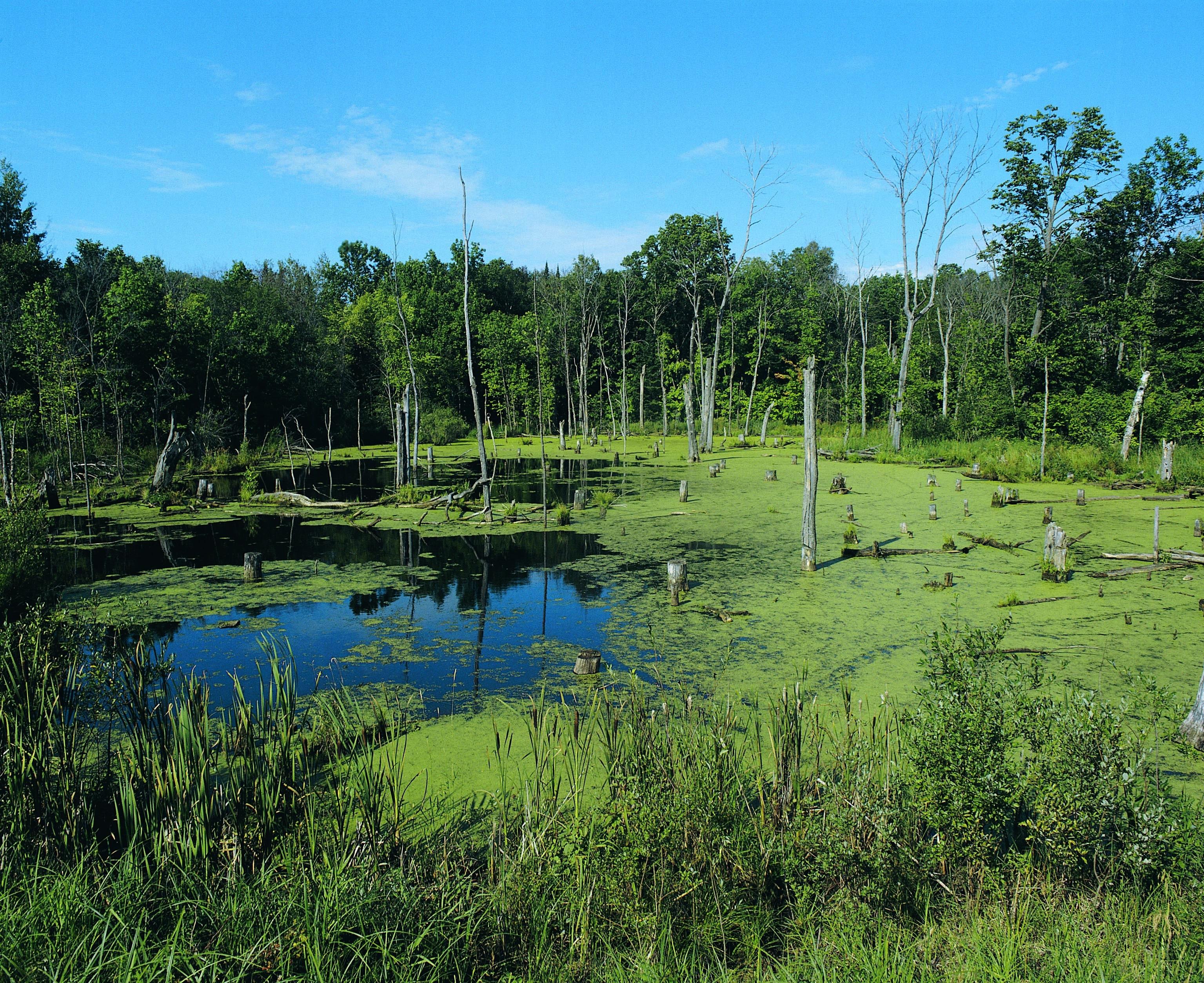 Becker County, Minnesota, United States of America